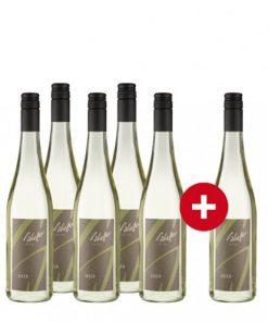 5+1-Paket Scheffer Scheurebe Secco Zotzenheimer Klostergarten -   - Weinpakete