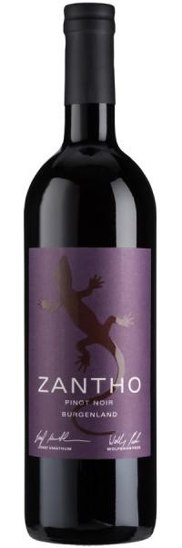 Pinot Noir - 2015 - ZANTHO - Rotwein