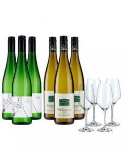 Viña Weißwein-Set -   - Campaign Bundles